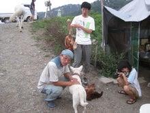 歩き人ふみの徒歩世界旅行 日本・台湾編-鶏の解体