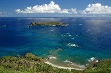 小笠原エコツアー 父島エコツアー         小笠原の旅情報と小笠原の自然を紹介します-東島