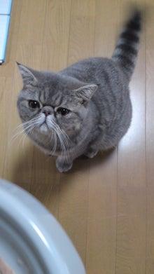 京風しろみそ御膳-100923_0158~01.jpg