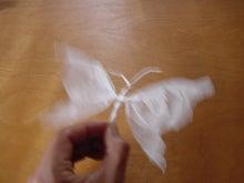 ササブログ-紙ナプキン はばたく
