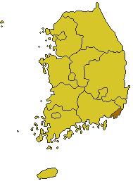 韓国なまずの釜山つれづれ日記
