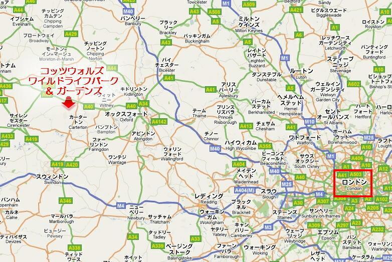 美しい国、英国のアンティーク&カントリーライフ-Cotswold Wildlife Park & Gardens map