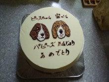 ビーグル犬「ぴーす」の ぐうたら日記