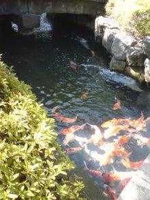 沖縄・愛でいっぱいの地球-100926_1037~04.jpg