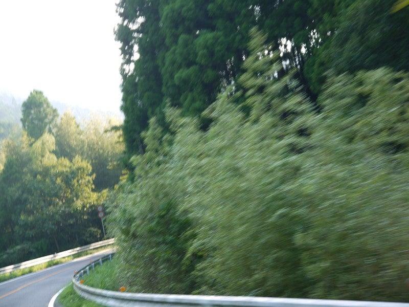 スポツスタ-徳島県道147号