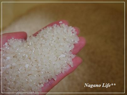 Nagano Life**-新米