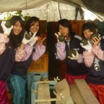 体験農園報告2010