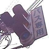 街や公共交通の衰退を監視する....警「美」報 告 書 ☆彡   ▼CAMMIYA-バス専用信号