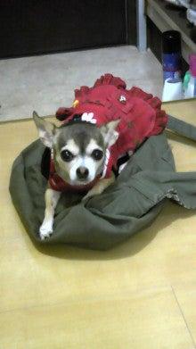 kanazoさんのブログ-101001_2151~02.jpg