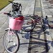 子供とサイクリング