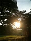 chi-deppのブログ