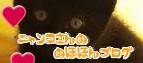 ☆ニャンコさんの☆のほほんブログ☆