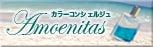 $カラーコンシェルジュ アモエニタス★スタイル-スキンサイドバナー