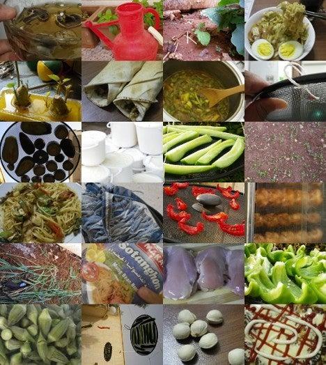 ベランダ菜園Cafe-シリアで復活
