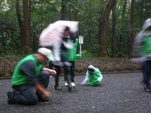 緑化推進事業の活動報告-101009参道でシラカシ拾い
