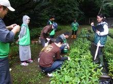 緑化推進事業の活動報告-どんぐり畑を見学