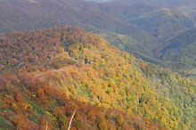 白神山地ツアーで能代山本地区の活性化すっぺ-2010年10月16日の藤里駒ケ岳7
