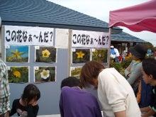 福島県在住ライターが綴る あんなこと こんなこと-農業センター101017-4