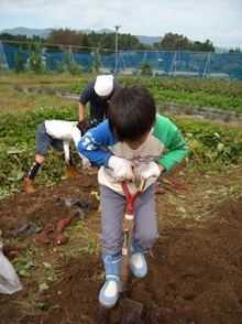 福島県在住ライターが綴る あんなこと こんなこと-農業センター101017-2