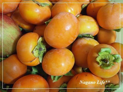 Nagano Life**-かき狩り