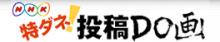 $IT×学生で日本を変えます!上智大3年 学生団体adoir代表ブログ