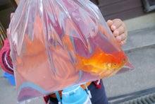 パパと娘のおでかけ日記in京都。 ~おすすめスポット&グルメ情報~