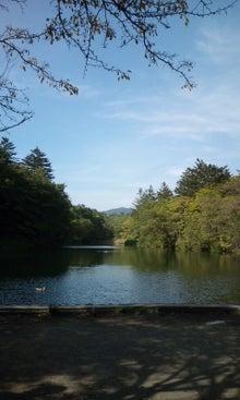 ☆ダンディ DACHS☆-2010軽井沢ー1