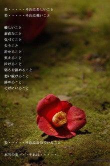吉井怜ブログ「Aquamarin18」 Powered by アメブロ-1026.jpg