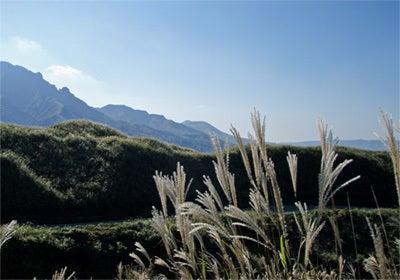 ゆる楽しいくらしづくり-秋の阿蘇、銀色の山並み。