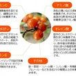 ☆インフル予防にも!…