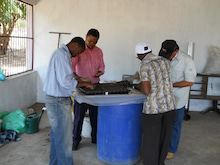 Jatropha(ナンヨウアブラギリ/ヤトロファ/ジャトロファ)による「みどりの油田プロジェクト」再生可能エネルギーの普及を目指して-播種