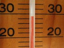 小笠原エコツアー 父島エコツアー         小笠原の旅情報と小笠原の自然を紹介します-温度計