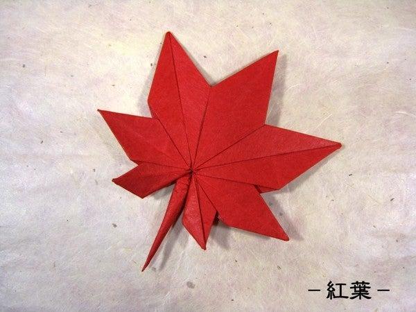 ... 秋の草花の折り紙画像まとめ