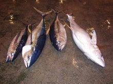 沖縄から遊漁船「アユナ丸」-8月の釣果