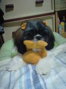 yuriyuri-0513さんのブログ-101102_2157~0001.jpg