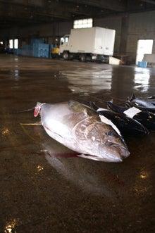 沖縄から遊漁船「アユナ丸」-10月の釣果