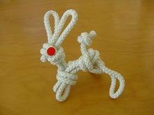 ササブログ-ひもウサギ
