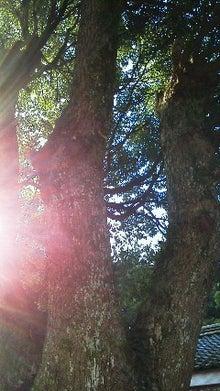 アセンションの愛と光をめざして 2012年12月21日(金) by エルエリオン(シリウス/次元上昇/彌永圭介/弥永圭介)
