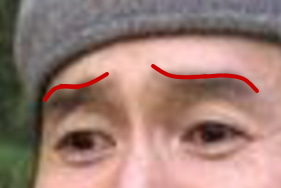 眉毛 整え方 眉毛 書き方 眉毛 形