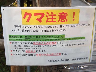 Nagano Life**-クマ注意