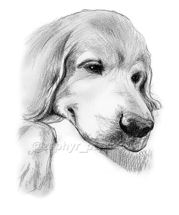 $「Dog Illustration Ustream」作品集-2010/10/25完成イラスト