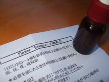 福岡のヒーリングサロン La cachette翌日報-フラワーエッセンスコンサルテーション