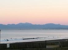 江ノ島ランナーのトレイルランとかボーダーコリーとかお料理とか