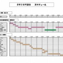 DR1GP2010参…