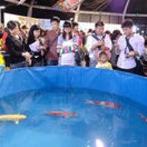 上海万博展示の錦鯉、…