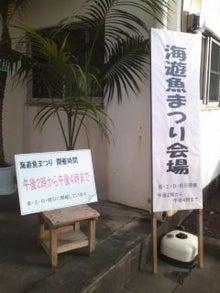 カメカウ☆コアラ ⊂(・●・)⊃-101120_1518~01.jpg