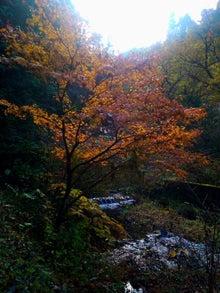 かっちゃんの日記-石裂山