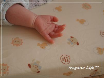 Nagano Life**-新しい命