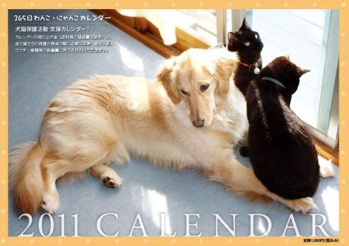 $山梨より犬の多頭崩壊 SOS!-カレンダー全体