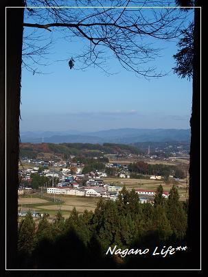 Nagano Life**-木陰から見る景色